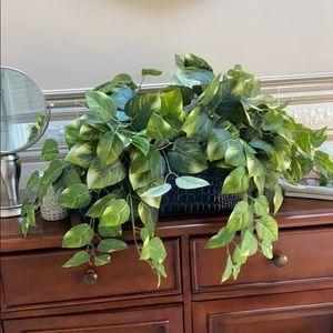 Lush Green Leaf Centerpiece